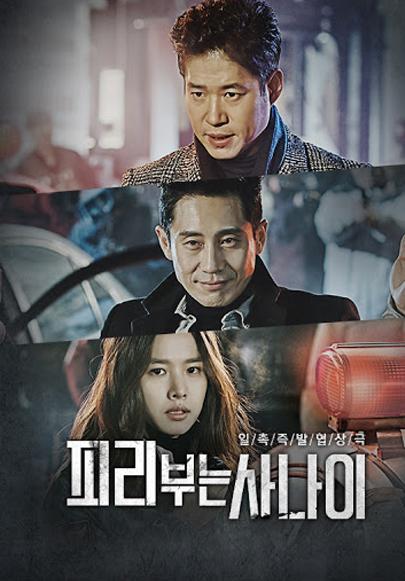 tvN <피리부는 사나이> 2016